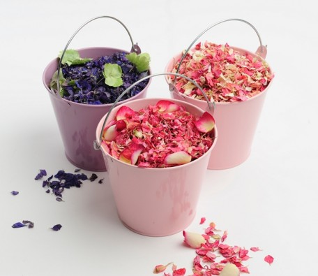 Shropshire Petals Natural Wedding Confetti