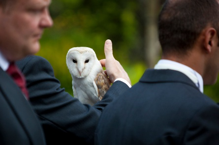 Best man and Owl